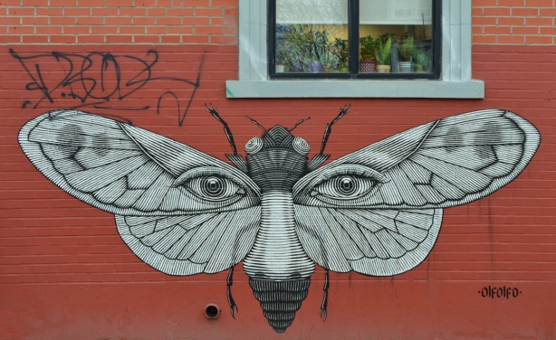 a large street art piece of a butterfly with man's eyes on the wings, boy of butterfly looks like man's nose