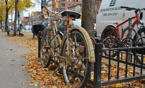bike decorated with many used tea bags parked beside a tree on Spadina