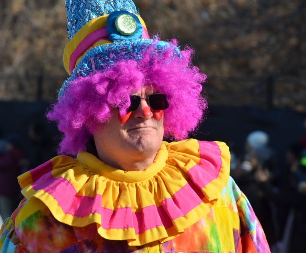 clown in Santa Claus parade with red nose and curly pink hair, yellow and pink striped collar