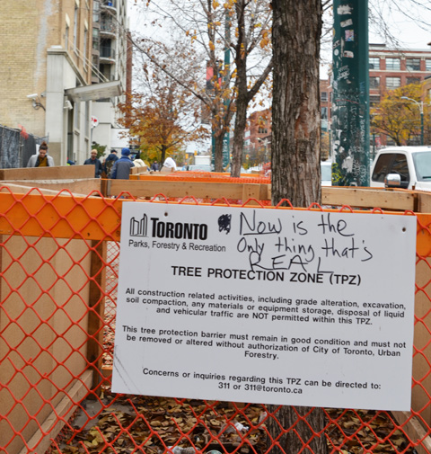 orange fence around a tree, tree protection area, someone has written on the sign: Now is the only thing real