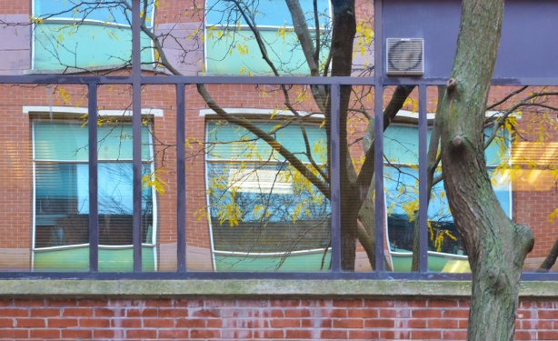 reflections in a set of windows