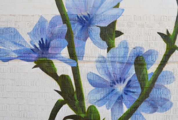 close up of blue flowers in the mural