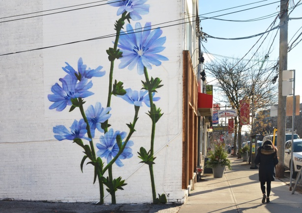 large blue flowers, mural, on a white wall, on the side of stores on Mt Pleasant Rd