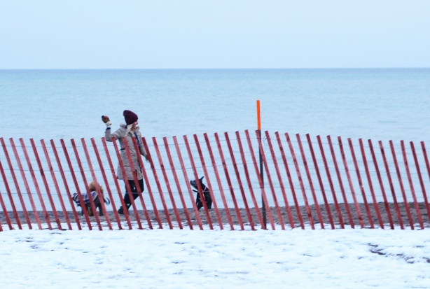 between a snow fence and Lake Ontario, a woman is in the process of throwing a ball for her dog who anxiously awaits the throw