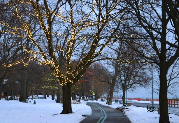late afternoon as it starts to get dark, along the bike path at Kew Beach, some Christmas lights on a few of the trees