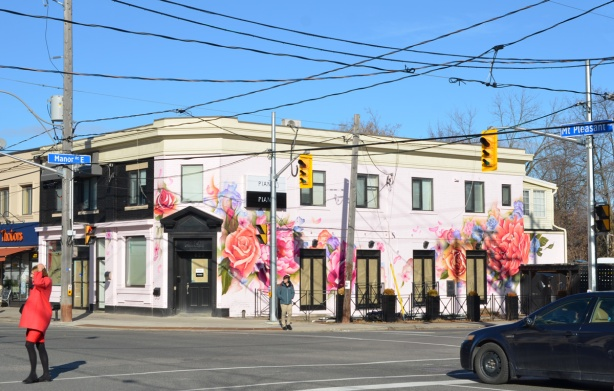 looking diagonally across the intersection at new Piano Piano restaurant on the corner of Mt. Pleasant and Manor Rd painted pink with large flowers, windows still papered over, rose, peony,