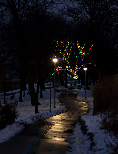 after dark, Christmas lights on tree, lights beside path, snow on the ground, small puddles on path