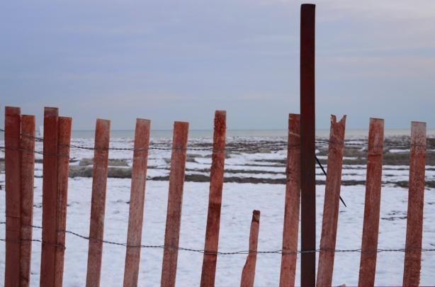 snow fence beside Lake Ontario at Woodbine Beach