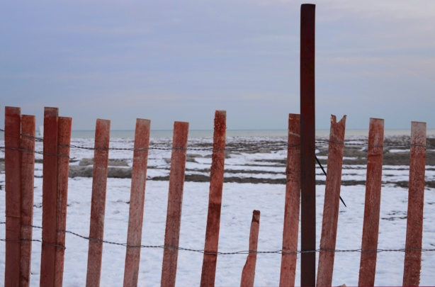 snow fence beside Lake Ontario at Woodbine Beach