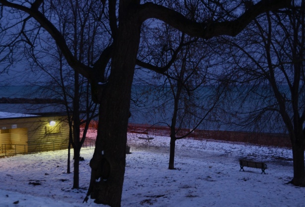 dusk, Kew Beach, snow, lights, snow fence, and trees,