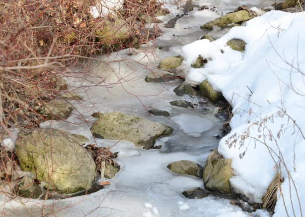 mostly frozen creek with snow on the banks and rocks in the shallow water