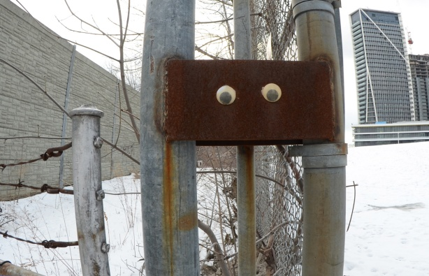 two large black and white googly eyes have been glued onto a rusty piece of metal on a fence