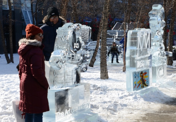people looking at and posing beside ice sculptures in Yorkville Ice Fest