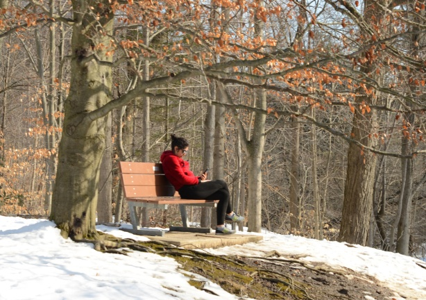 a young woman in a red jacket sits on a bench at Wilket Creek Park and reads a book in the sunshine.