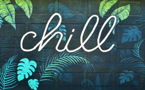 painting on a garage door, green with leaves and with the word chill written in cursive in white paint