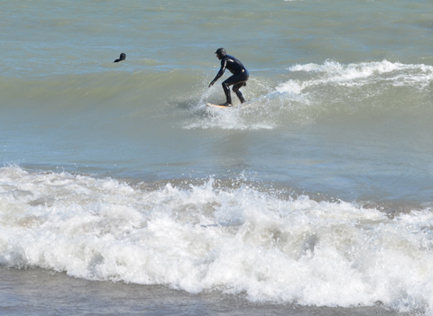 men in the water with wet suits on as they try to surf in Lake Ontario