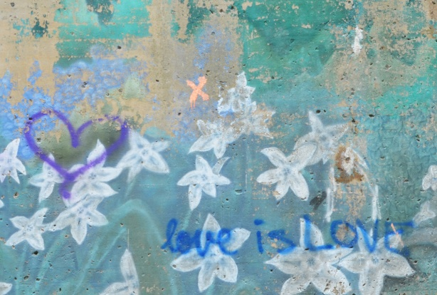 on an old faded mural of white flowers, someone has written in blue, love is love, and also a purple heart has been drawn