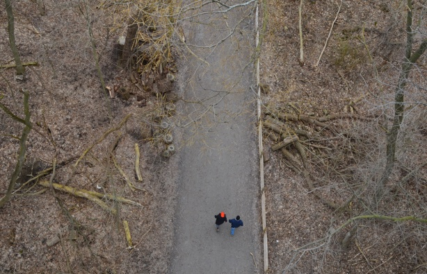 2 people walking on path through trees, taken from a bridge high above them