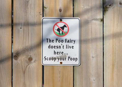 a sign on a wood fence that says the poo fairy doesn't live here scoopy your ppop, aimed at dog owner