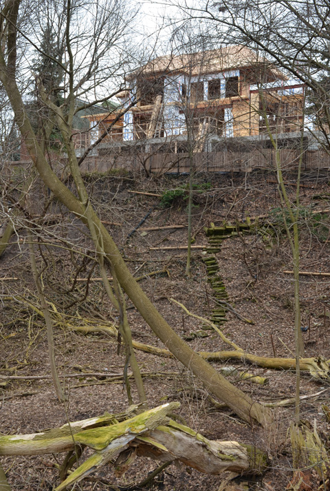 the back of a house under construction, at the top of a hill on a ravine, trees and dead leaves on the ground, early spring,