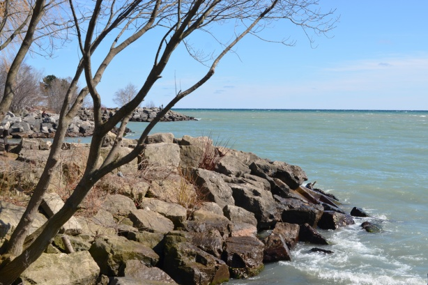 shoreline of Lake Ontario, rocks and trees, early spring, no leaves,