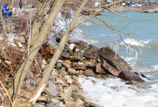 a woman with black hair and weraing a blue winter coat is taking picture of icicles with her phone, waves crashing against the rocks along the shore below the tree with the icicles