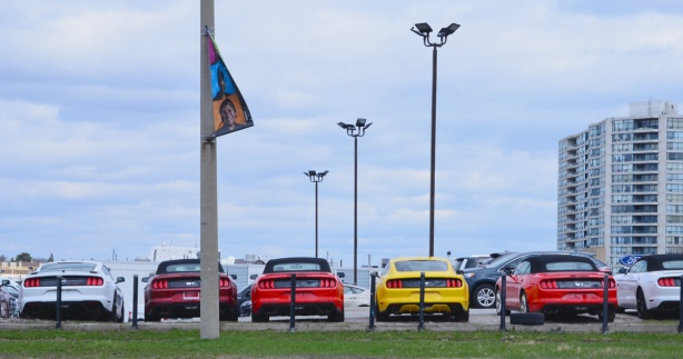 a row of cars for sale, seen from the back