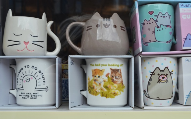 mugs with cat theme pictures on them, on shelves, in window of a store