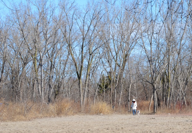 a woman walking her dog beside a forest, on a beach