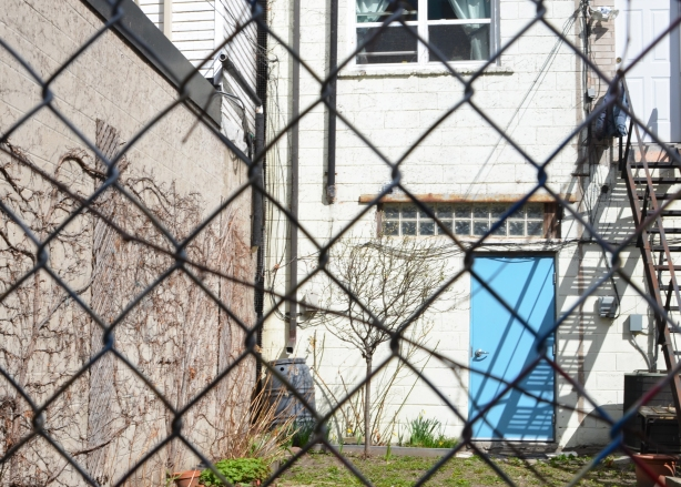chainlink fence in front of a backyard with a bit of green grass, white building with a bright blue door