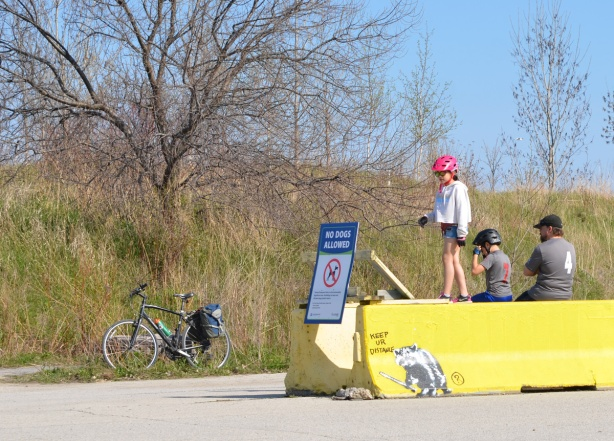 a girl in a red bike helmet walks on top of a yellow concrete barrier