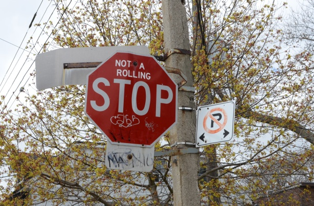 stop sign in front a large tree just beginning to bud in spring, words added to stop sign so it now says not a running stop