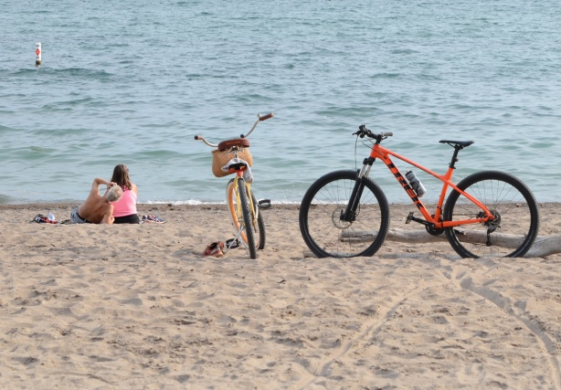 a couple sits near the water, their bikes are parked on the sand beside a large piece of driftwood