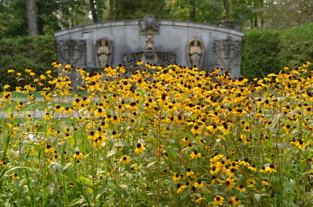 a large number of black eyed susan flowers in a garden, with sculptures and statues on a wall in the background