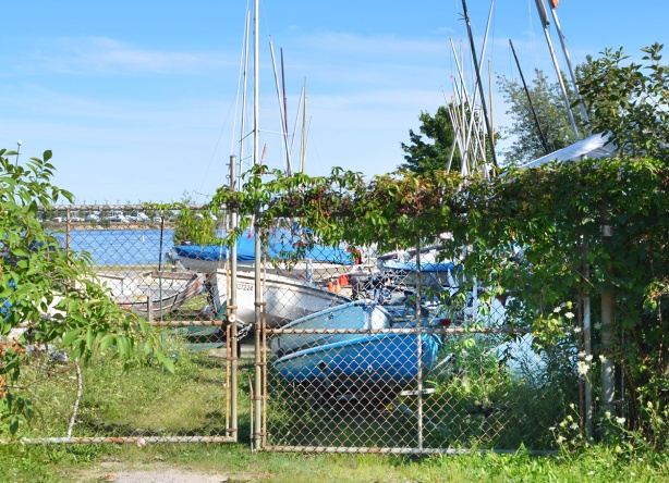 wide chain link gate leading to a small boat club. Sailboats on the land, water in the background, lots of greenery