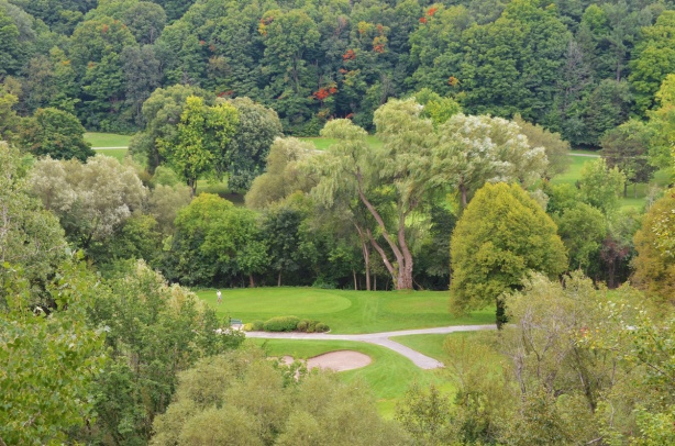 big willow tree and other trees, some just starting to turn to autumn colours, on Don Valley golf course from the hill on the north side of the course