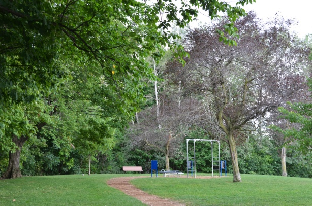 park with exercise equipment and large trees