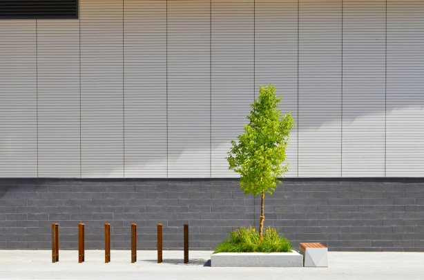 small green tree and six brown bars (for locking bikes) in front of a grey wall