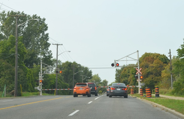 four cars waiting at a level railway crossing on Morningside Ave, red lights flashing and barriers down but no train yet