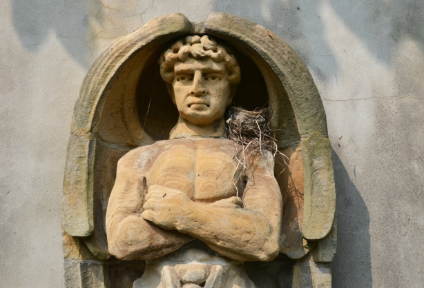 the upper torso and head of a man, sculpture in stone, in a niche in a wall. a bird has built a nest on his shoulder