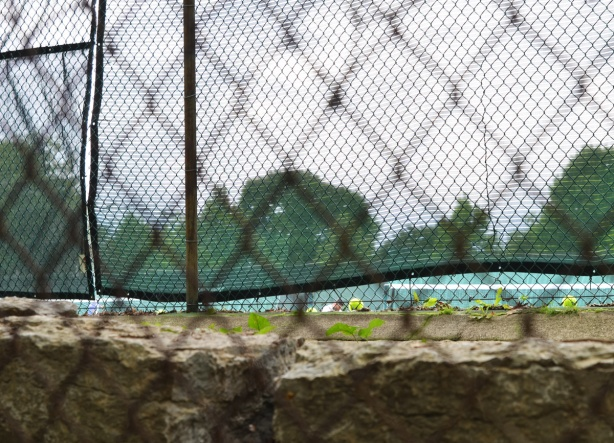looking through the netting around a tennis court