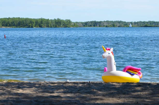 a verylarge inflatable white unicorn with pink and yellow mane and tail, floatie, on the beach with Lake Ontario behind it