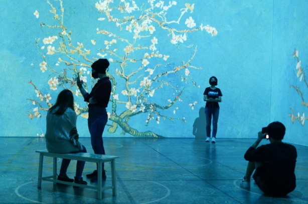 Vincent Van Gogh Immersive exhibit - crooked tree with white blossoms on a turquoise background
