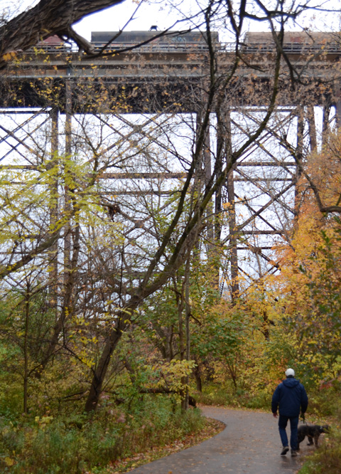 a man walks his dog along the path through the Don River ravine, autumn trees, and the path goes under the tall CN railway bridge with its metal girders