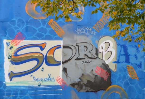 the letters s o r b ae, with different fonts and different backgrounds