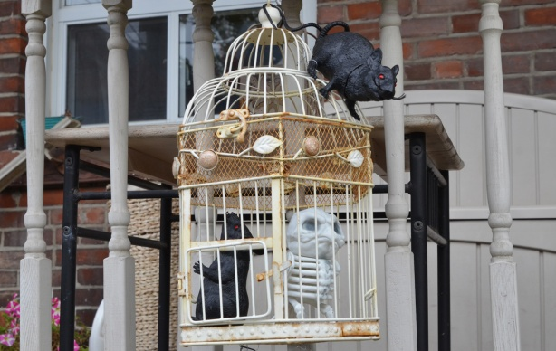 a white bird cage on a front porch with a fake black rat inside it and a rat climbing on the outside too