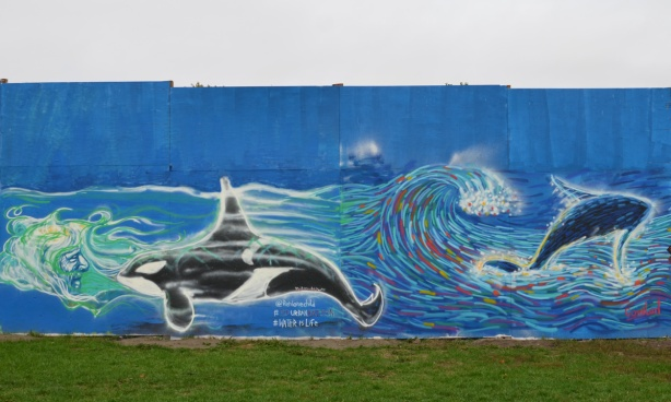 2 murals, one is a whale and the other is a dolphin, swimming in the water