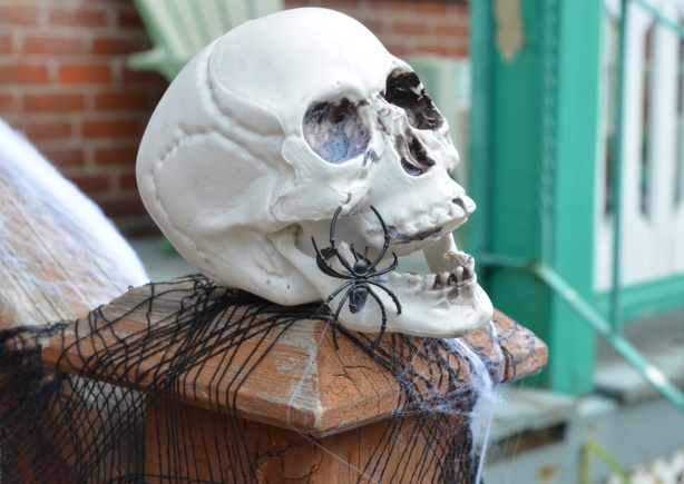 a white skull on a railing post, a black plastic spider climbing on the jaw