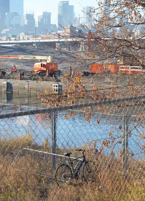 a bike leaning against a tree, the Keating channel behind it, as well as Port Lands construction.