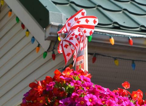 canada flag design on plastic windmill in a planter in a backyard